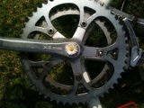 PEDAL: A Farm to Table Bike Tour,#1